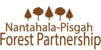 Nantahala-Pisgah Forest Partnership